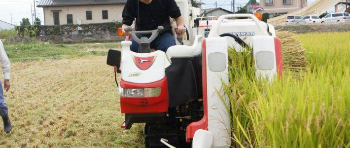 いきなり農業体験! ――明日、製造業社員が稲刈りをします