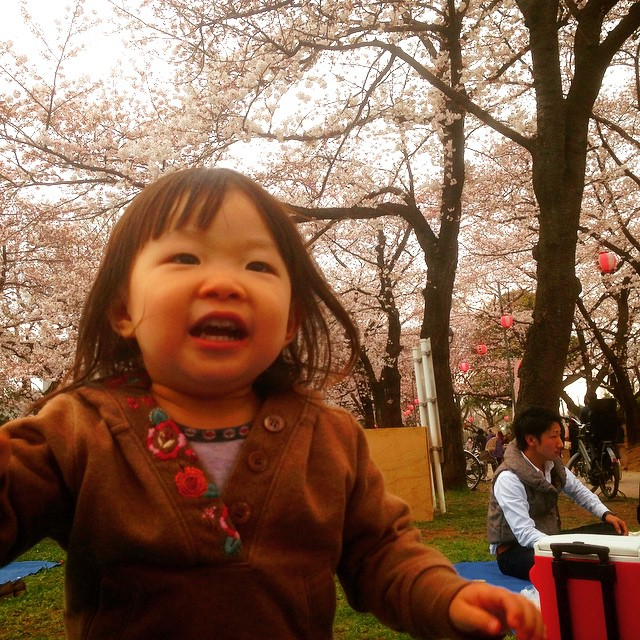 [PH] #LUDWIG #smile #cherryblossom #photooftheday #instagram #iphoneonly Mar 29, 2015 at 12:25PM