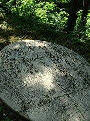 希望という種子(シュジ)(No.164 越後妻有 大地の芸術祭2010.06)☆☆☆★