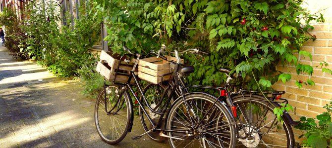 積載量重視の自転車選び